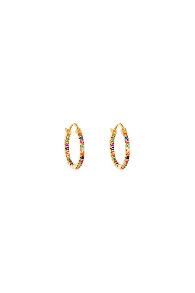 Smalle gold plated Zirkonia oorringen